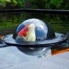 Velda observatiebol voor vissen, Floating Fish Dome, type M, 56 x 42 cm