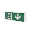 Adurolight® pictogram bord noodverlichting, acrylaat, pijl naar onder