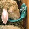 Suevia drinkbak met lokwaterdrempel, type 375, met rvs-ventiel, voor kalveren, schapen en geiten