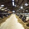 Adurolight® Premium Quality Line led breedstraal armatuur, dimbaar, Iance 60, 60 W, 4000 K  detailimage_005 100x100