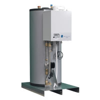 Eco Heating Systems warmtapwaterketel, Consul+