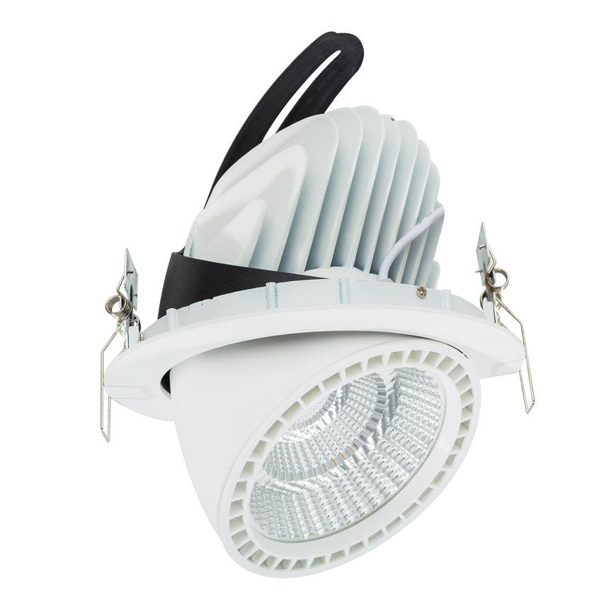 Adurolight® Premium Quality Line led Downlight Gimbal, Robin, wit, 45 W, 3000 K  default 870x870