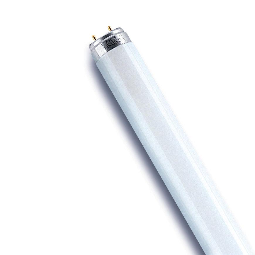 Osram Lumilux T8, TL-lamp, Cool White, G13, 23 W